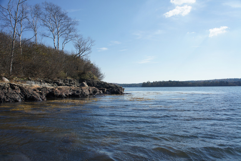 Maine Vacation-02657.jpg