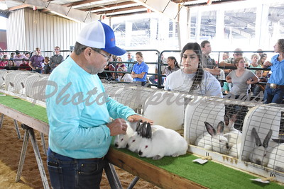 Saturday 09-25-21 Rabbit Show