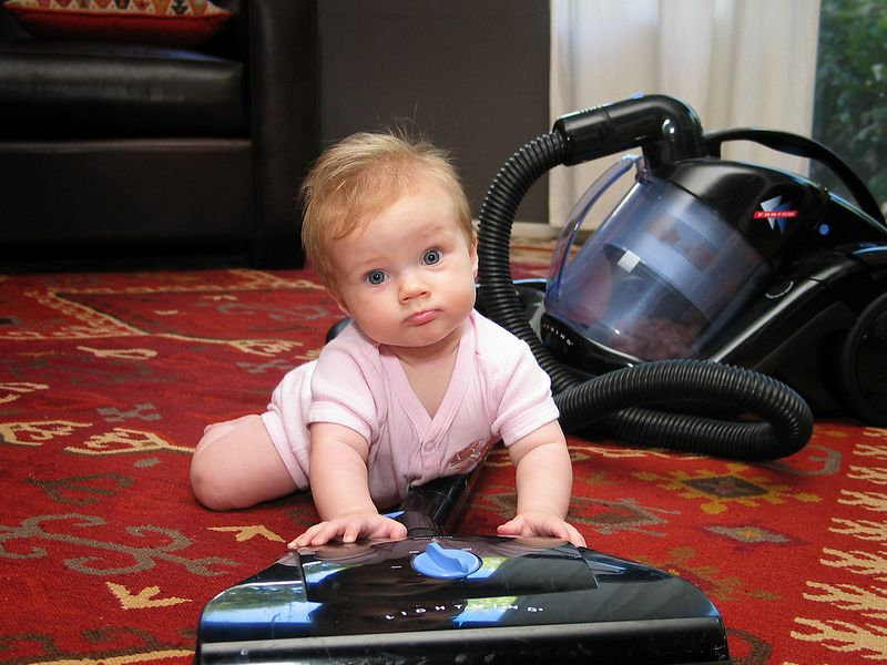10/17 - Lili loves to play with the vacuum cleaner