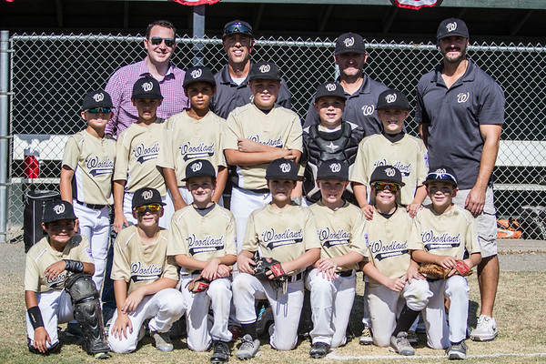 Day 8 - 2015 LL 9-10 NorCal State Championship Game