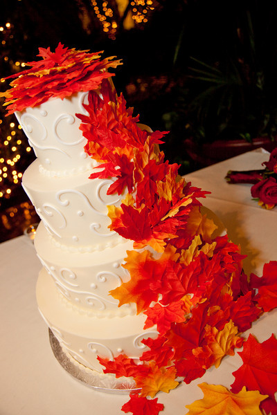 Emmalynne_Kaushik_Wedding-879.jpg