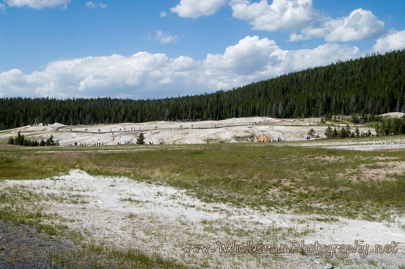 20100712_Yellowstone_3083.jpg