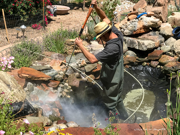 Pond Cleaning 2017