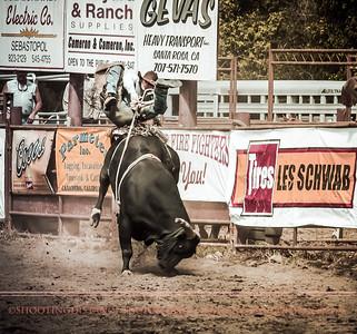2012 Bull Riding