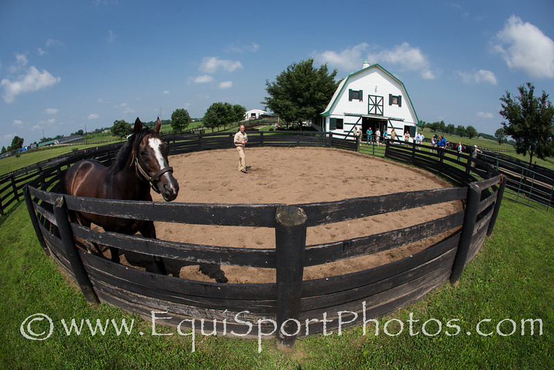 Anthony, an inmate at the Blackburn Correctional Facility does a demonstration of working a horse in the round pen..