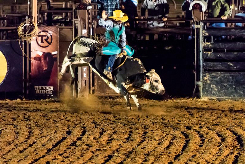 big-cedar-rodeo-273.jpg
