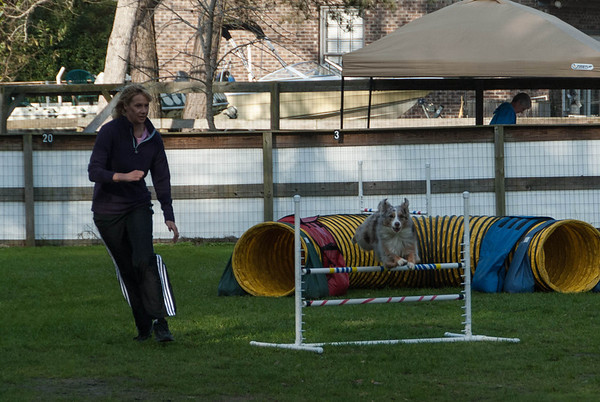 2013-03-16 CPE Agility at Murrells Inlet, SC