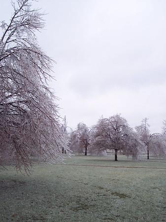 Ice 20050106