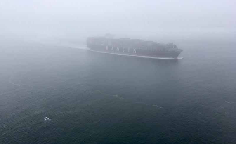 Whales!!! Cruising around the ship...
