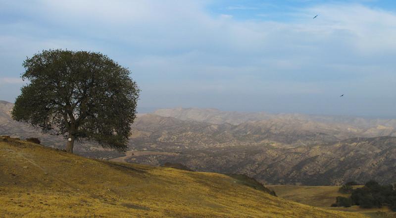 parkfield-grade-central-california-1.jpg