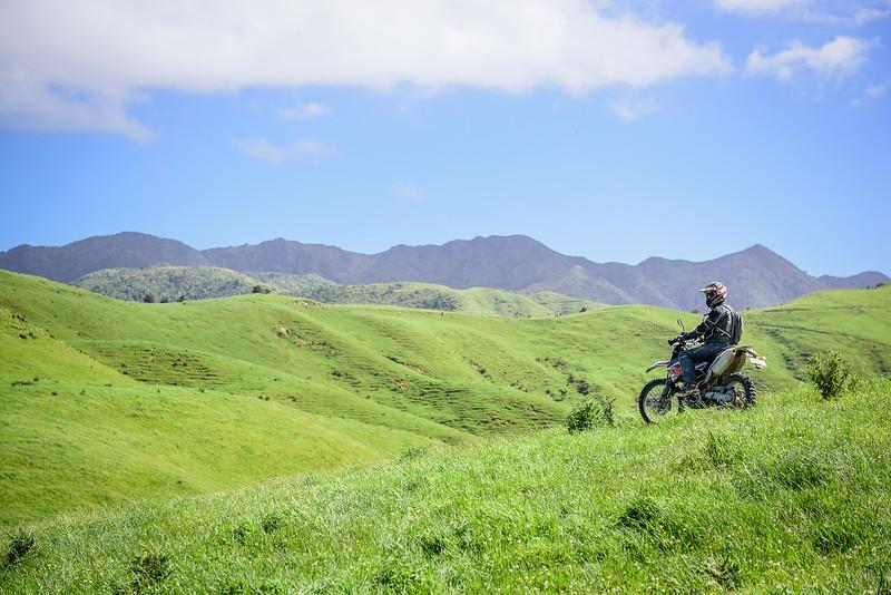 2018 KTM New Zealand Adventure Rallye - Northland (727).jpg