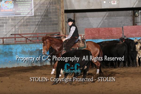$5000 Novice Horse East TN CHA 4/17