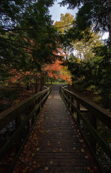 Shubie Park Foot bridge