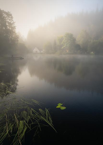 Morning Mist at Loch Ard