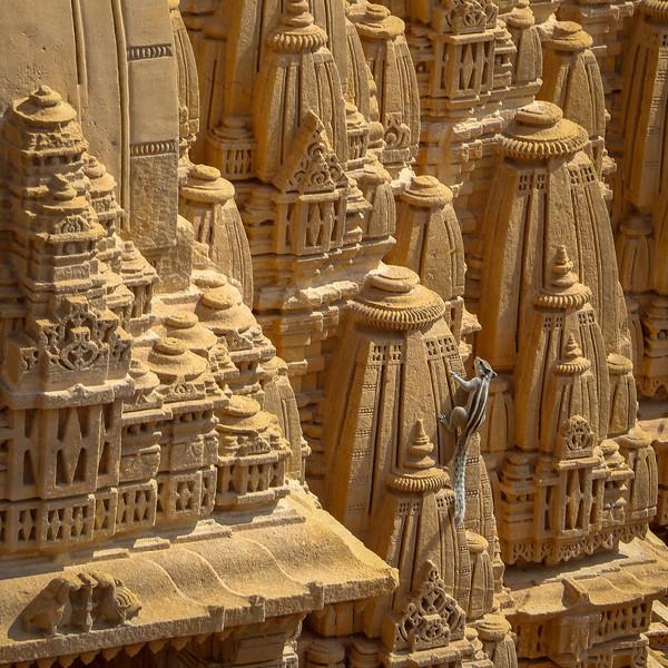 India-Jaisalmer-2019-0601.jpg