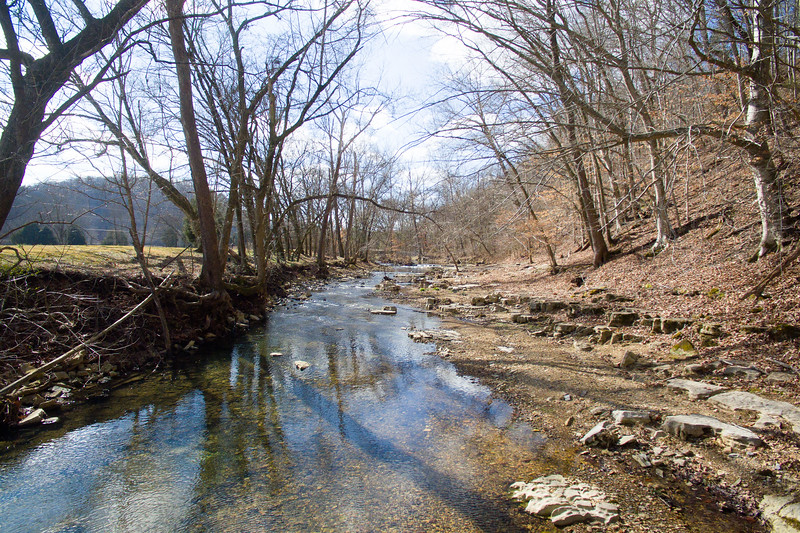 1956 Sams Creek Rd-12.jpg