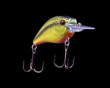 The Art of Fishing Lures