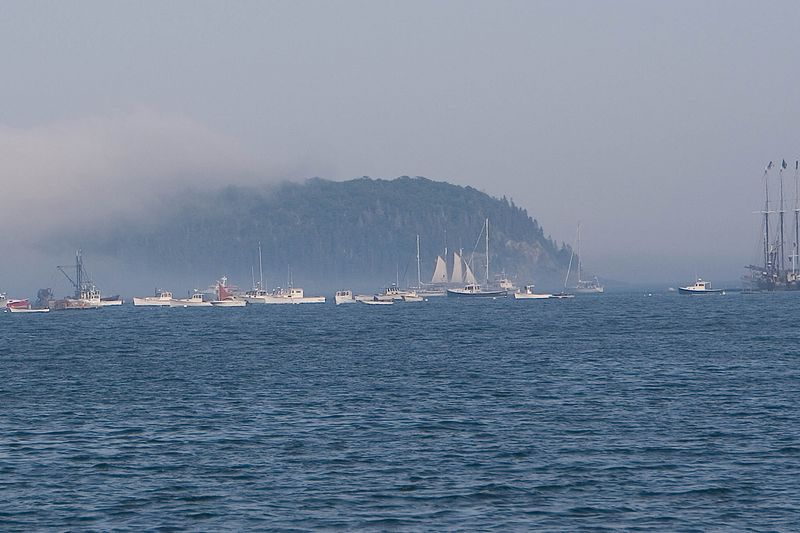 And more fog in Bar Harbor