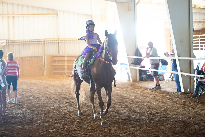 HorseCostume-56.jpg