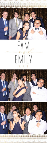 Emily and Fam (photo strips)