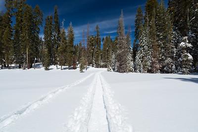 2018 Yosemite NP