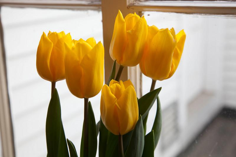 2010-04-04-Easter-7.jpg