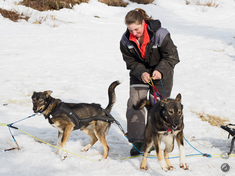 20190325_Blaire_and_Liz_Mushing_2.jpg