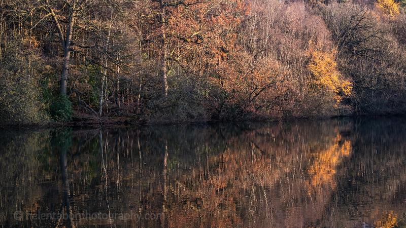 Eavestone Lake-24.jpg