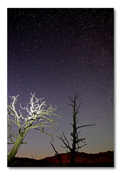 Second night at Old Faithfull, Yellowstone NP. Annick is definitely bored waiting for me and the stars! OK, I am ready, you can lighten the tree, darling...Never before had I seen so many stars in the sky. A testimony of how wild this park is.