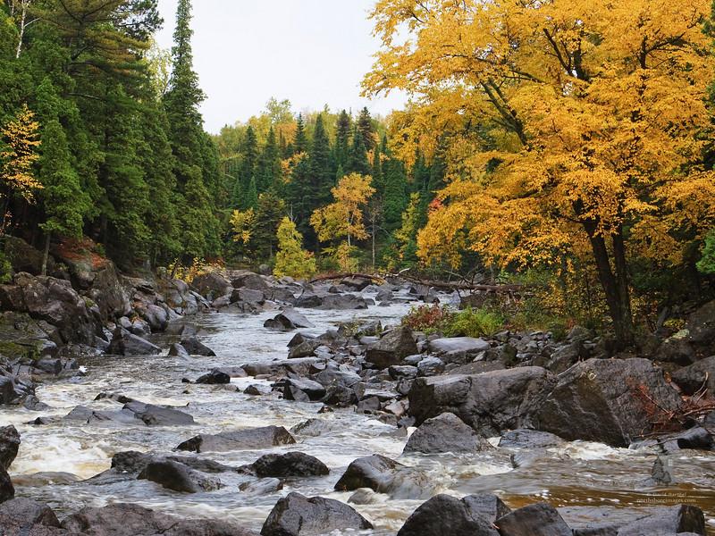 beaver_river1.jpg
