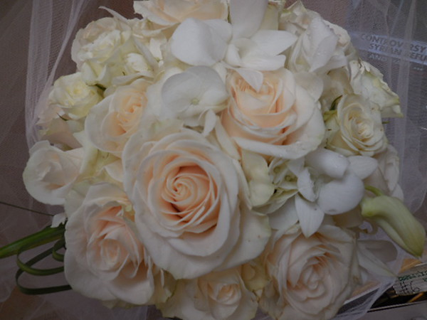White roses, hydrangea , orchids white snaps- $120