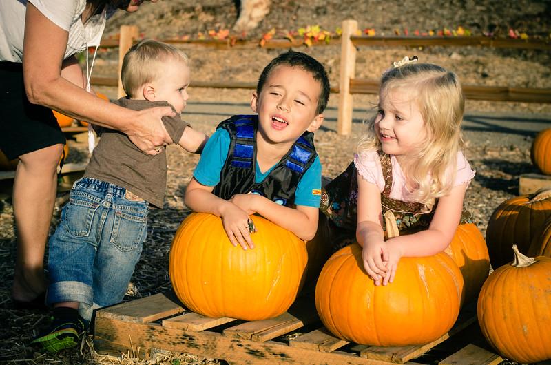Pumpkin Patch-27.jpg