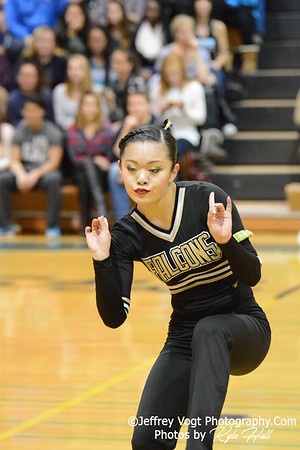 1-30-2016 Poolesville HS Varsity Poms at Damascus HS, Photos by Jeffrey Vogt Photography with Kyle Hall
