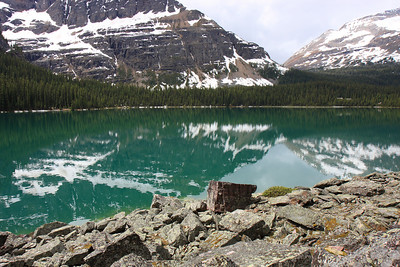 Lake O'Hara Lakeshore (June 2009)
