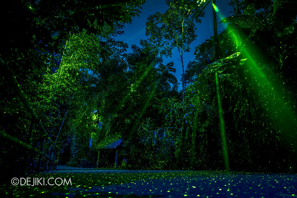Singapore Zoo Rainforest Lumina - Luminous Pathway