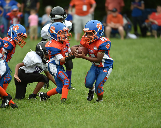 Delmar Pop-Warner Football & Cheer