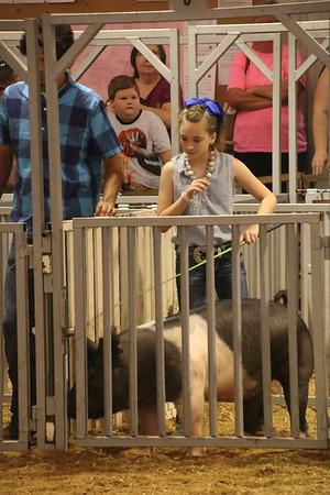 2016 Swine Show