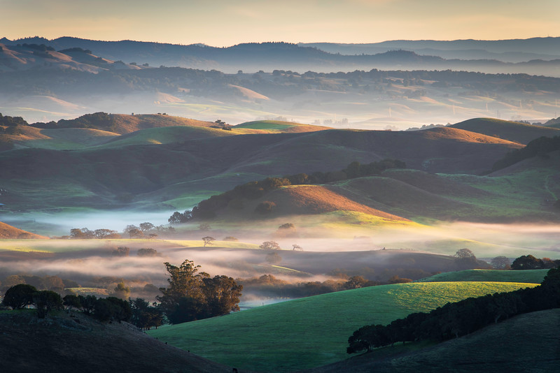 Petaluma & Sonoma County