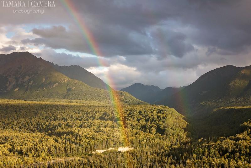 Rainbows-4-2.jpg