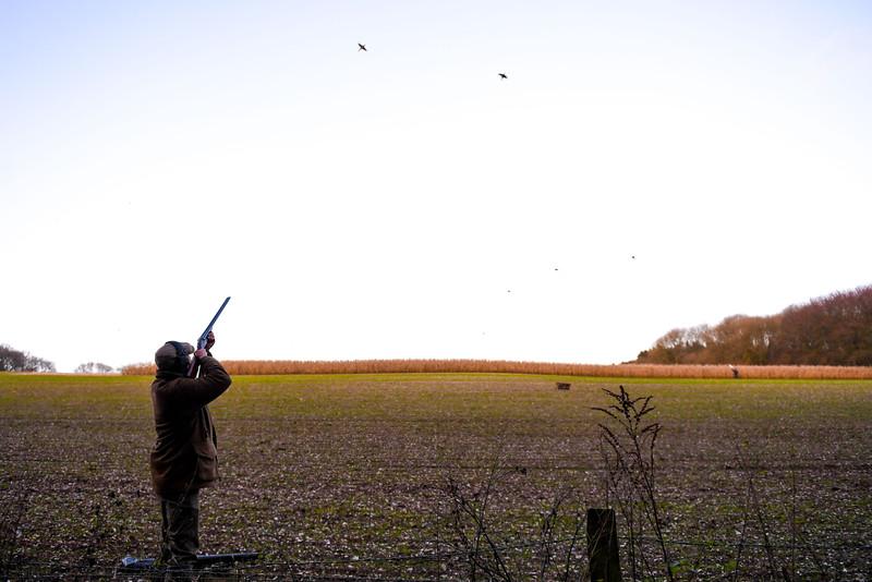 Earthline Shoot 14-12-19