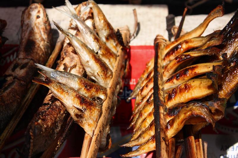 Yummy grilled fish