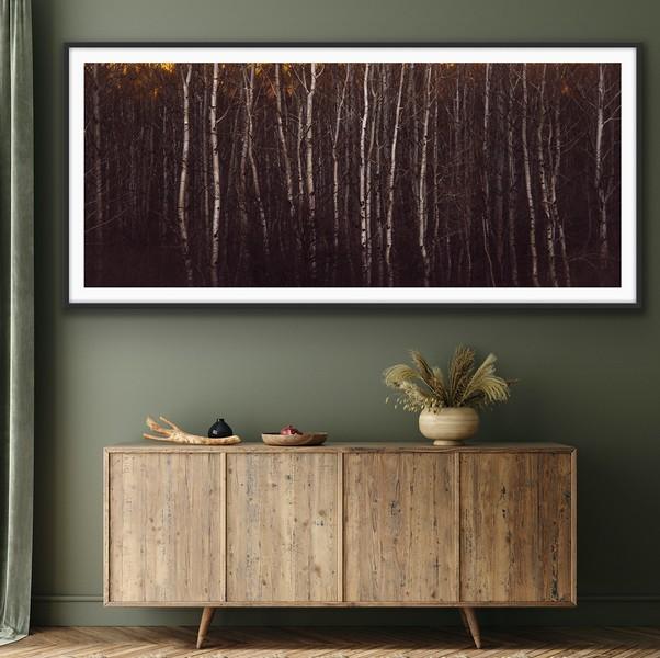 'Evening Aspens' Fine Art Print Framed/Unframed