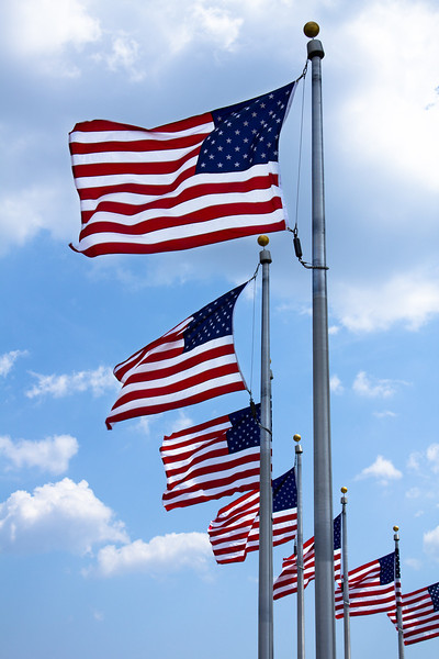 Flags of the US