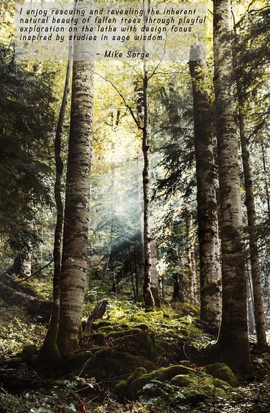 MikeSorge-Woodturner-Vertical1-Top.jpg