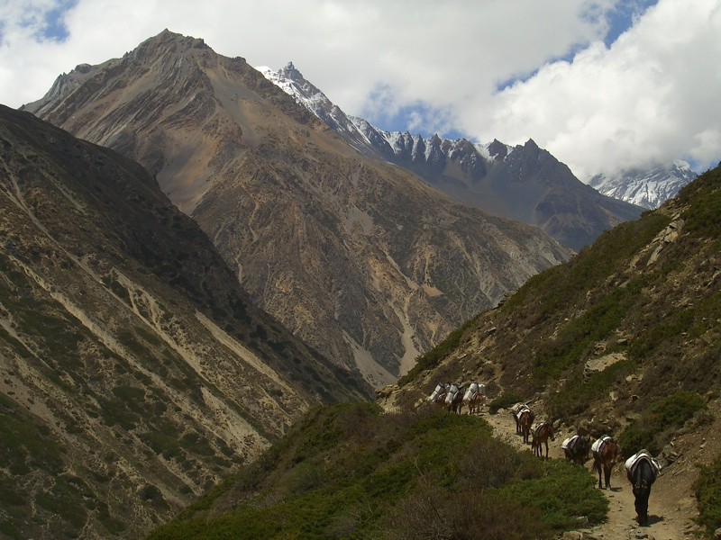 Himalayan Peaks - Annapurna Circuit, Nepal