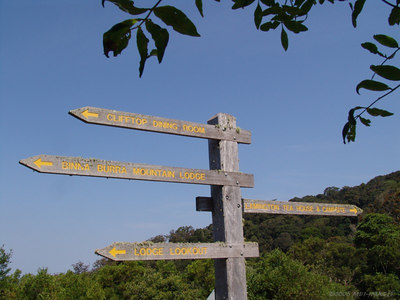 Trek to Binna Burra