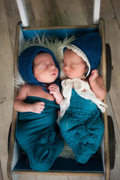 twins (34 of 35).jpg