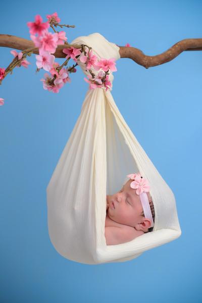 Newborn - Reyenger -0006.jpg