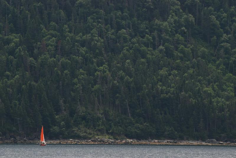 <html><span class=fre>Voilier sur la baie de Bonne - Terre-Neuve</span> <span class=eng>Sailboat on Bonne bay - Newfoundland</span></html>