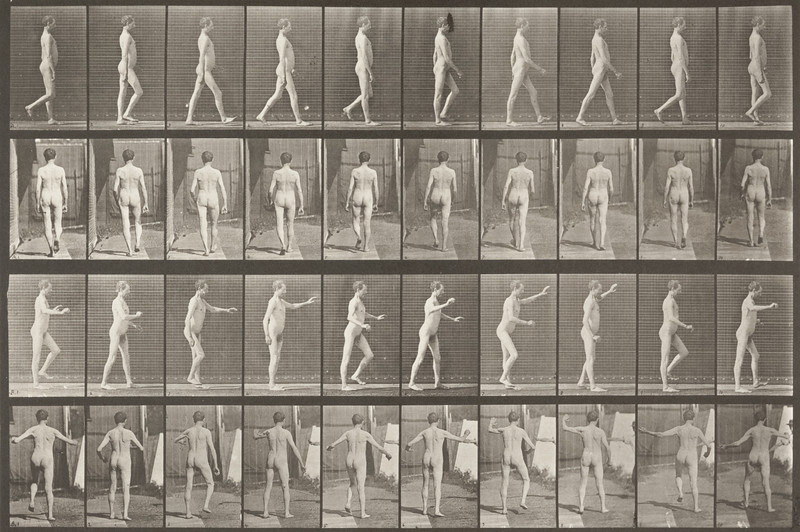 Nude man with locomotor ataxia walking with both arms up and down (Animal Locomotion, 1887, plate 550)